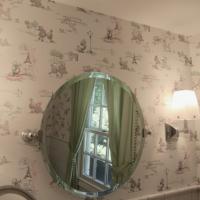 elegant-mirror
